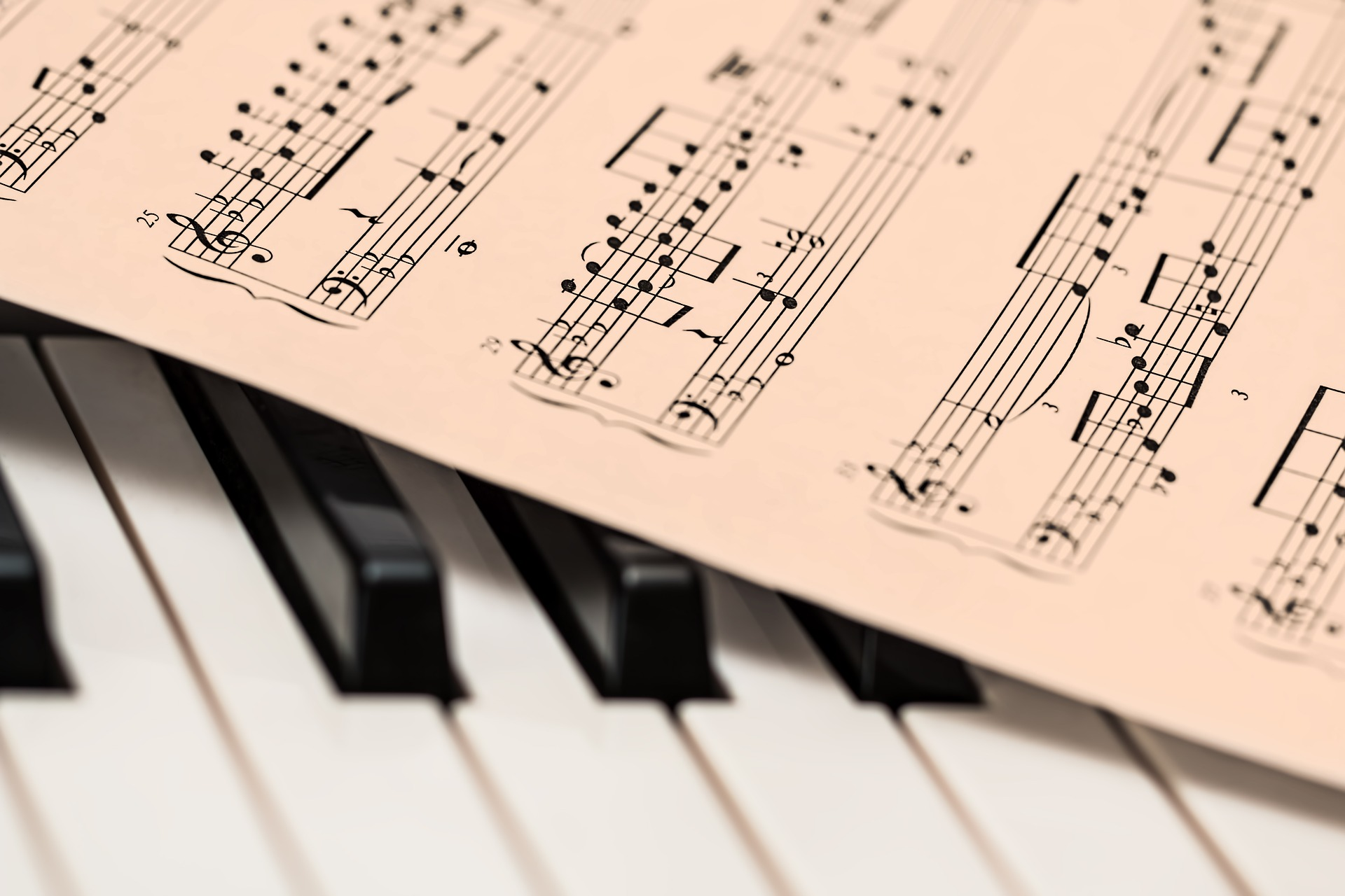 Helping Your Child to Blossom With Piano Lessons Tampa