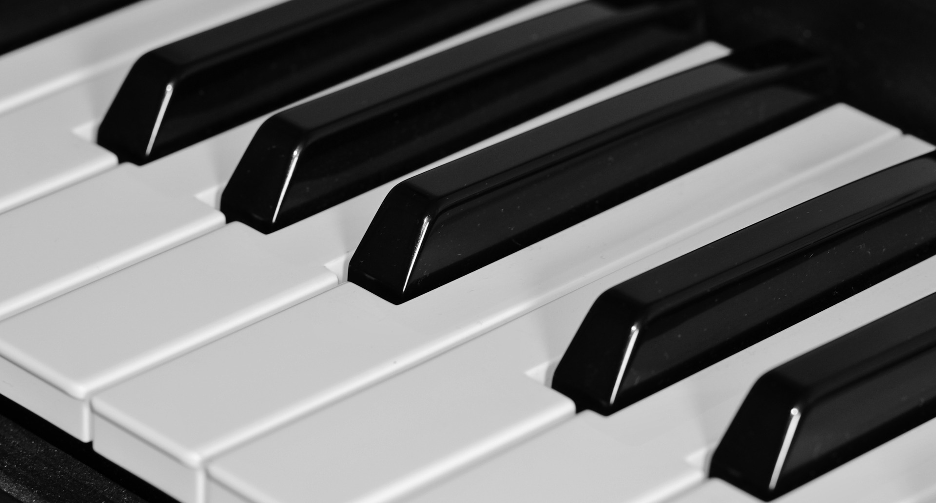 Why New Tampa Piano School Tops the Competition!